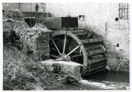 AAIGEM - Erpe-Mere (O.Vl.) - Molen/moulin - Echte Foto Van De Engelse Molen (ca. 1980) Met Ijzeren Bovenslagrad - Places