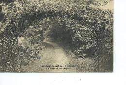 Angleterre-Devon-*EXMOUTH- Southlands School- A Corner Of The Garden - Inghilterra
