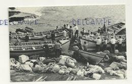 Sainte-Hélène. Nightingale Island. Tristan De Cunha 1974. Longboats Preparing. Photo By R. Svensson - Sainte-Hélène