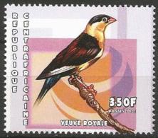 Central Africa -MNH- Family WHYDAS - Shaft-tailed Wydah ( Vidua Regia ) - Zangvogels