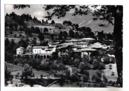 Bivedo Di Bleggio - F.G. - Anni ´1950 - Trento