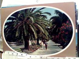 3 CARD  S SAN BENEDETTO DEL TRONTO  VB1975<  FL1167 - Ascoli Piceno