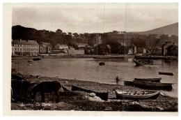 15141   Ireland Bantry 1908    View Of Harbor - Cork