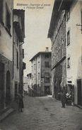 Arezzo - Bibbiena - Ingresso Al Paese E Palazzo Dovizi - Ed. A. Cartocci - Arezzo