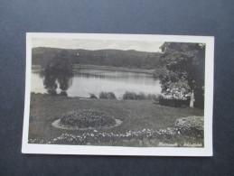 Ansichtskarte / Echtfoto 1941 Sudentenland Hainspach Kreis Schluckenau. Schloßteich. Feldpost - Sudeten