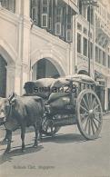 SINGAPORE - BULLOCK CART - Singapore