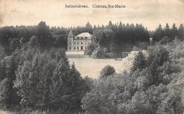 Salmchateau Chateau Ste-Marie  Vielsalm         A  1092 - Vielsalm