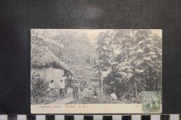 CP, Amerique, Antilles, TRINIDAD Peasant's Home TRINIDAD BWI Edition Muir Marshall And Co - Trinidad