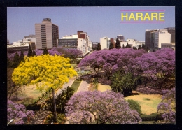 Harare, Zimbabwe / Postcard Not Circulated - Zimbabwe