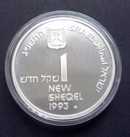 Israël New Shegel 1993, Onafhankelijkheidsdag/toerisme, Zilver Proof, KM:240 - Israël