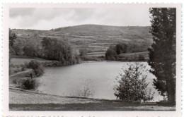 SAINT-SULPICE-LAURIERE ( Haute Vienne ) -  L'Etang -  1954 - France