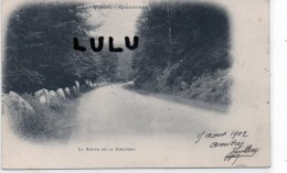 DEPT 88 : Précurseur 2 Scans  : Gérardmer La Route De La Schlucht - Gerardmer