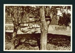 ERITREA  -  Asmara  Le Campane  Della Chiesa Copta   Unused Vintage Postcard - Eritrea