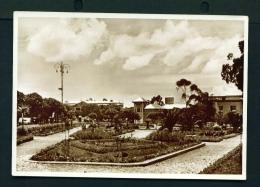 ERITREA  -  Asmara  Giardini Pubblici  Unused Vintage Postcard - Eritrea