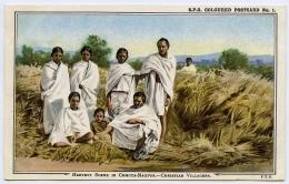 INDIA : HARVEST SCENE IN CHOTA-NAGPUR - CHRISTIAN VILLAGERS - India