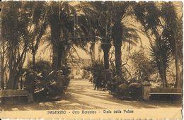 Palermo - Orto Botanico - Viale Delle Palme - Palermo