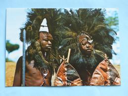 KENYA - MASAI Warriors (costumes, Coiffes) - Kenya