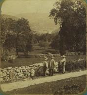 """Stéréo Circa 1860. Légendée """"Savoie. Le Crêt Du Bief"""". Plutôt Jura à Lavans-lès-St-Claude ? Paysans. - Stereoscopio"""