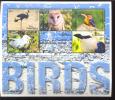 MINT NEVER HINGED MINI SHEET OF BIRDS   #   M-264   ( GAMBIA   2677 - Non Classés