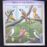 MINT NEVER HINGED MINI SHEET OF BIRDS   #   M-255-3   ( GAMBIA   2348 - Birds
