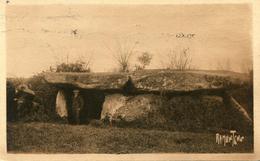 DOLMEN(LA FREBOUCHERE) LUCON_SABLES D OLONNE - Dolmen & Menhirs