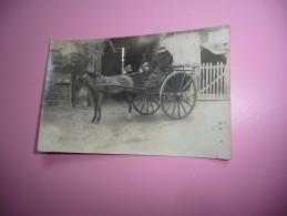 CP, Attelage Charrette Mule Ou Cheval - Cartoline