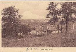 Virton - Paysage Vers Le Carmel (animée, Vaches) - Virton