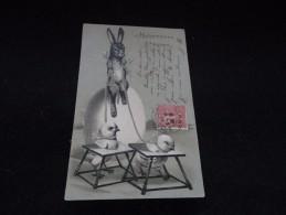 Heureuses  Pâques. Carte Gaufrée. Avant 1904. Le Lapin Et Les Poussins. Voir 2 Scans. - Pâques