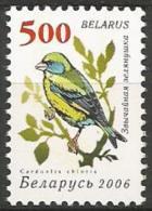 Belarus - MNH - Family FINCHES And EUPHONIAS - European Greenfinch ( Chloris Chloris ) - Zangvogels