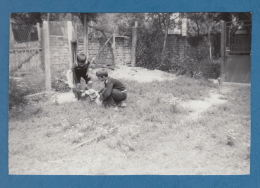 301027  / Village  Vladovtsi ( Tryavna Municipality ) - TWO CHILDREN BOY PLAY WITH YOUR DOG 1983 Bulgaria Bulgarie - Bulgarie