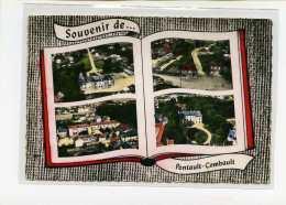 PONTAULT COMBAULT  Souvenir De... Edit Lapie  N° 115  Postée 1965 - Pontault Combault