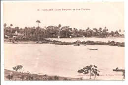 Guinée Française - CONAKRY - Anse Téminéta - French Guinea