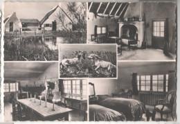 Cp LA CAMARGUE STES MARIES DE LA MER Hôtel Club Mas Cacharel  (13 BOUCHES DU RHONE) - Saintes Maries De La Mer