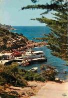 83 - Ile Du Levant - Le Port De L'Ayguade Et Le Chemin Des Grottes - Voir Scans Recto-Verso - Otros Municipios