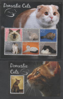 ST. KITTS, 2015, MNH, CATS, SHEETLET+ S/SHEET - Chats Domestiques