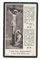 Doodsprentje Genootschap H. Franciscus-Xaverius 1911 Nederbrakel Sadones Pambreu Roos De Stercke D''Haese Fostier Leleu - Images Religieuses