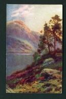 SCOTLAND  -  Loch Lomond  Used Vintage Postcard As Scans - Dunbartonshire
