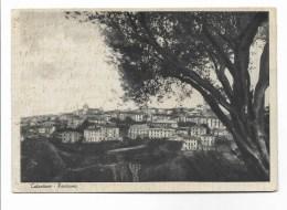 CATANZARO  PANORAMA VIAGGIATA FG 1940 - Catanzaro