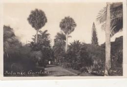 TRINIDAD &  TOBAGO - Postkaarten