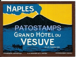 37814 ITALY NAPLES NAPOLES GRAND HOTEL DU VESUVE LUGGAGE NO POSTAL POSTCARD - Hotel Labels