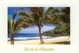 Ile De La Reunion CPM Voyagée. Sud. Plage De Grand Anse & Anse Des Cascades - Sin Clasificación