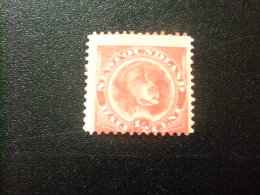 NEWFOUNDLAND TERRANOVA  TERRE NEUVE 1880 Perro Chien Yvert Nº 39 * MH - Newfoundland