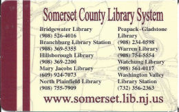 Sumerset County Library System In NJ - Small Keyring & Full Sized Library Cards - Other