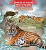 UGANDA 2013 - Predators. Vulnerable Species - YT BF402, Sc 2042 - Roofkatten