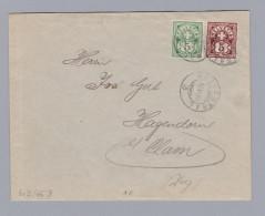 Schweiz Wertziffer 1899-06-12 Murgenthal Brief Wertziffer Zu # 60B + 65B - 1882-1906 Armoiries, Helvetia Debout & UPU