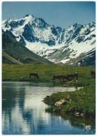 7044 - Calme Et Poésie D'un Beau Lac D'Alpage -Fermier Avec Ses Vaches -Animée -Non écrite Dos Propre - Scan Recto-verso - Rhône-Alpes