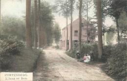 CORTENBERG - KORTENBERG : L'Allée Du Bois - RARE COLORISEE - Cachet De La Poste 1925 - Kortenberg