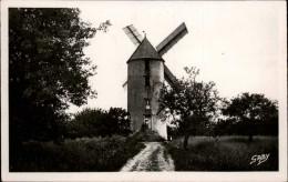44 - DERVAL - Moulin à Vent - Derval