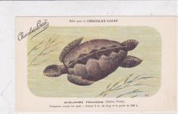 "CARD TARTARUGA-TORTUE ""CHE'LONE'E"" FRANCHE ""FRE'QUENT TOUTES LES MER   PUBB.""CHOCOLAT LOUIT""FIRMA E.C.-FP-V-2-0882-25218 - Tortugas"