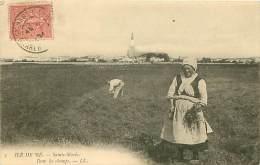 17.ILE DE RE.N°101.SAINTE MARIE.DANS LES CHAMPS - Ile De Ré